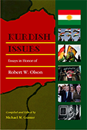 Kurdish Issues book cover